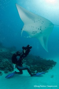 Roger Munns films a Manta ray at Hanifaru bay, Ari atoll, Maldives