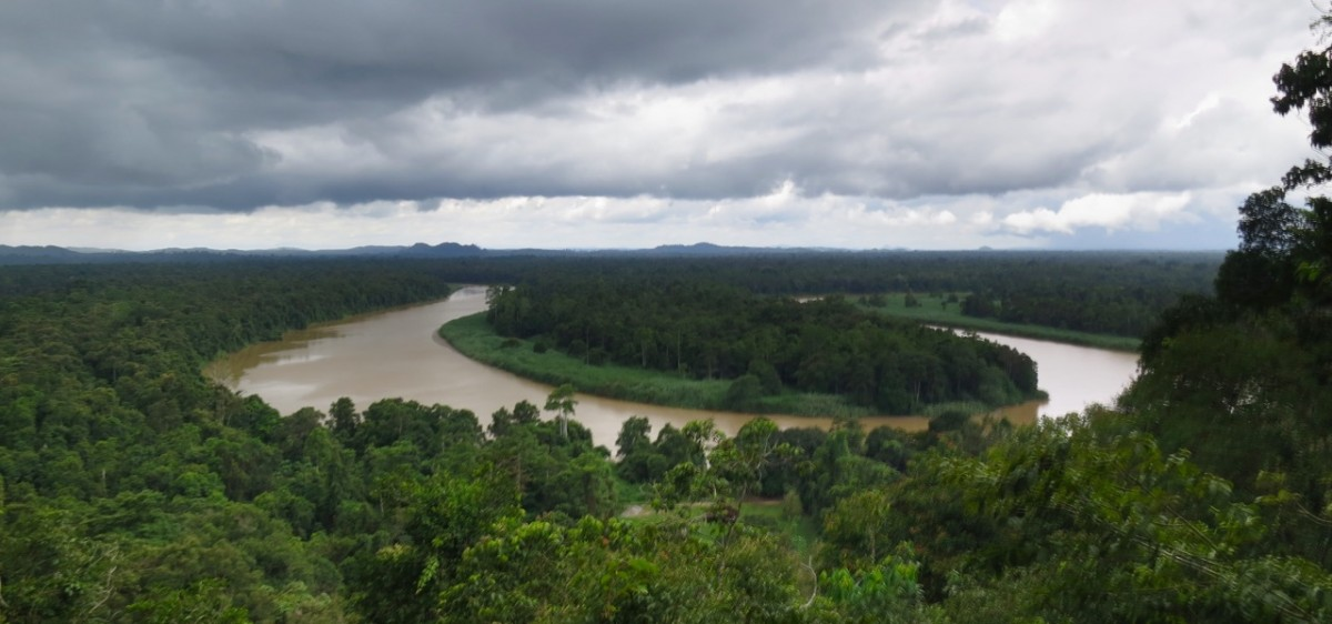 Rainclouds gathering over the Kinabatangan
